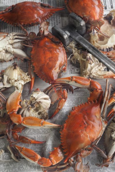 Louisiana blue crabs turn bright red when boiled; hand-picking the white lumps inside is the key to this salad.