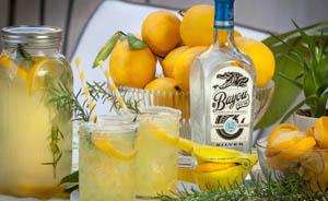 Lemon-Rum-Cooler-horiz-bottle-184.jpg