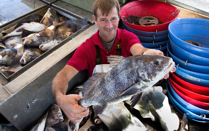 Douglas Olander brings a boatload of black drum to the dock st Big D's Seafood. (Photo credit: Ed Lallo)