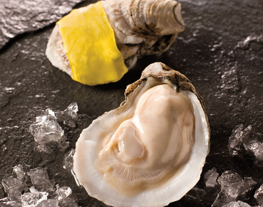 Gold Band in-shell oysters are pre-opened for convenience and safety. (Photo creddit: Motivatit archive)